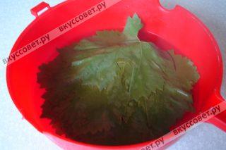 Виноградные листья моем и заливаем кипятком на 5 минут