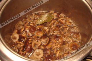 Затем заливаем грибы еще раз холодной водой, примерно 1 литр, и варим еще 10 минут