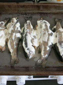 Форель в духовке целиком: Иногда чем проще, тем лучше. Вспоминаю свежевыловленную волжскую рыбу, пожаренную на сковороде без...